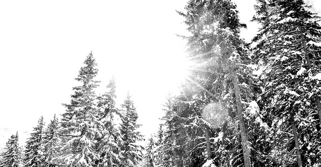 Chalet en Haute-Savoie