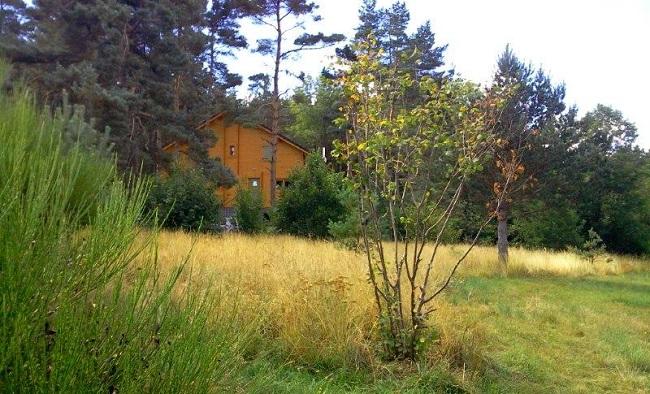 La nature verdoyante du Gard