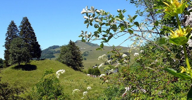 Vacances en Haute-Savoie