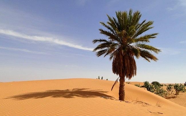 Mauritanie francophone