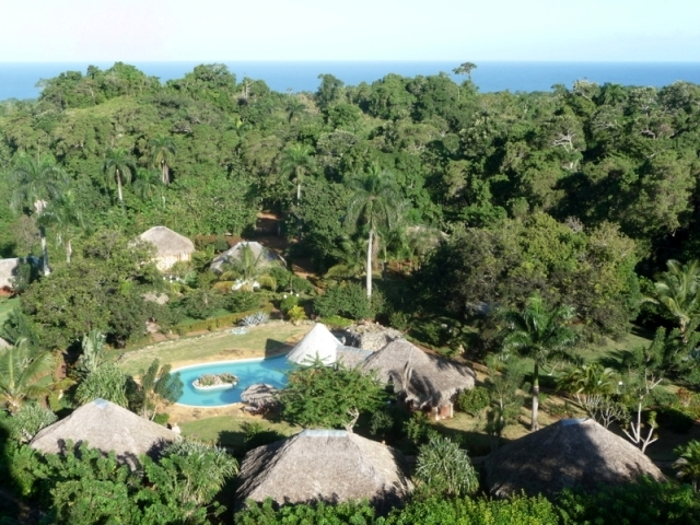 Vaste jardin tropical