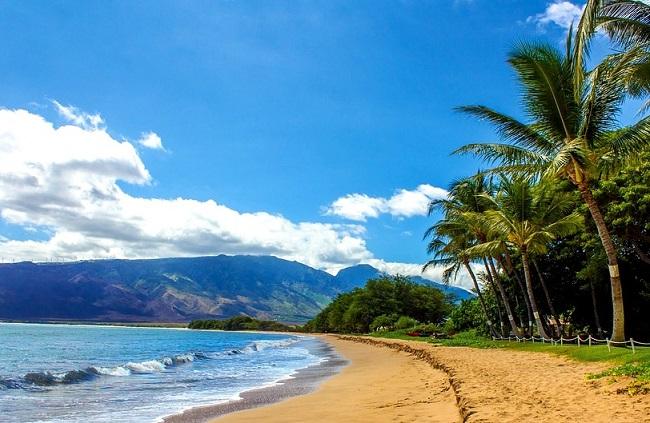 Plage de rêve à Hawaii