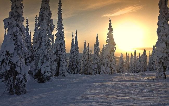Paysage hivernal au Canada